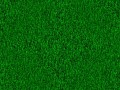 How to make a simple, generic grass texture in GIMP