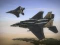 Report 028: F-15J & more