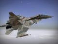 Report 037: Su-30MKI