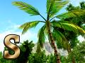 Survivor Air & Sea update!