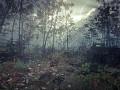 Raindrop Teaser 2