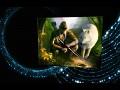 The Spellweaver TCG fantasy world - Nature and The Elvari Alliance