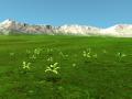 Testing vegetation !
