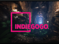 Launch of our Indiegogo Campaign