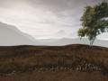 Terrain, Animation, Physics and Combat