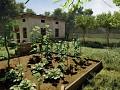 Planting system