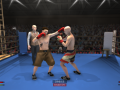 Project Boxing Dev Log