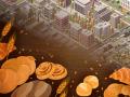 We build the city! Middelton