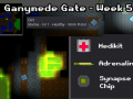 Ganymede Gate - Week 5