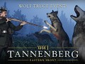 Wolves prowling in the forests of Tannenberg