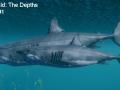 Born of The Wild: The Depths Mini Dev-Log #1