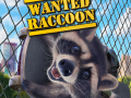 How we made Raccoon's simulator!