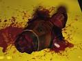 Black-Mesa HD