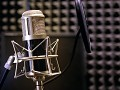 Voice Acting mod