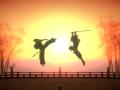Setting Sun: The Co-update