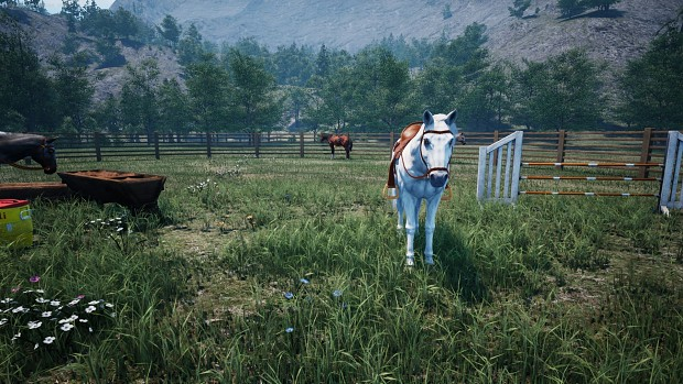 HORSES UPDATE NOW LIVE | Horses, Training, Bidding, New Hats and More!