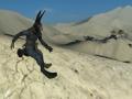 HD Video Tutorial - Custom Animations