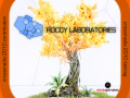 Roccy Labs first release!