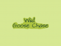 Wild Goose Chase - Windows