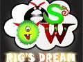 Rig's Dream Windows Setup