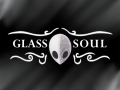 Hollow Knight: Glass Soul [1.2.2.1]