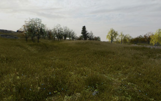 Grass and Flower Textures