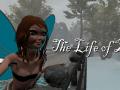 The Life of Zuei