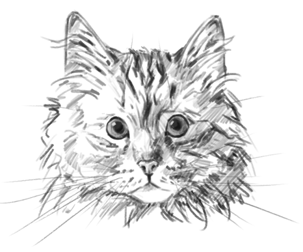 Cat's Menace MacOS/OSX