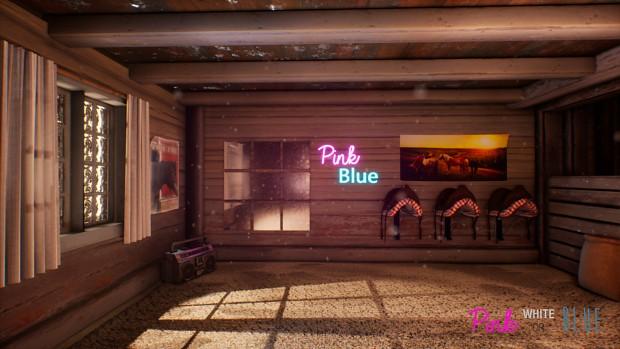 PinkWhiteorBlue32