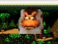 Donkey Kong Mugshot