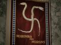 Moronica for Morons