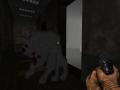 InSanity - DooM Survival Horror Demo 1.06