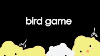 BirdGame