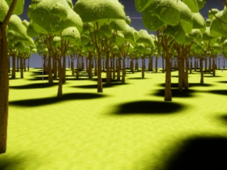 Forest Early Access Version 1