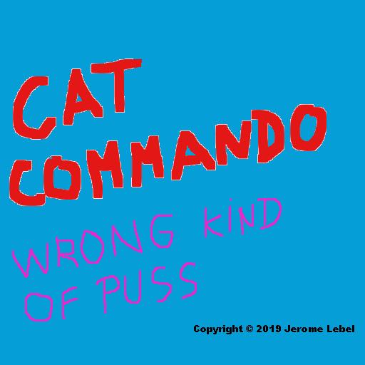 CatComWronKindOfPuss1 4 00