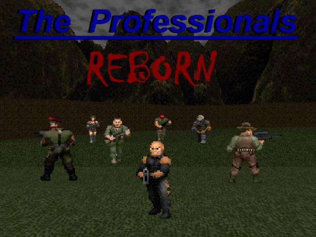 THE PROFESSIONALS REBORN Fixed