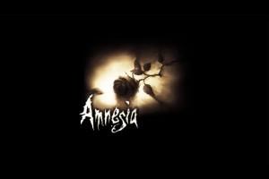 amnesia - custom stories installer