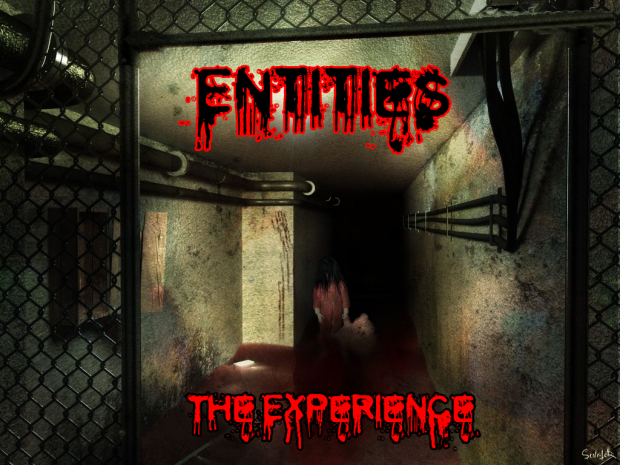 The Experience- Entities
