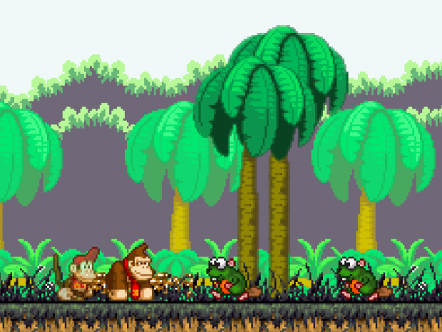Donkey Kong Country 4 - The DK Bay