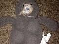 The Teddy Bear 1.1