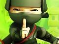 NinjaHidden