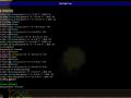 Beta 11.5 module file