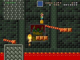 Mushroom Kingdom Fusion Screenshots
