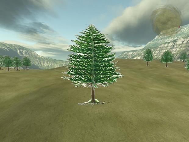New Tree!