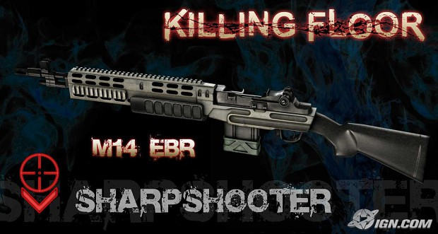 The M14 EBR