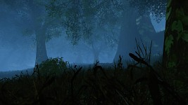 Aporia: codename Darkmist Forest
