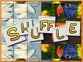 The Shuffle Puzzle