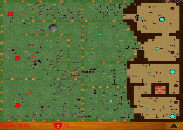 Hill Ants War