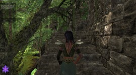 New paths and elf textures