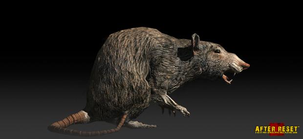 Rats. Rats Never Change. #1